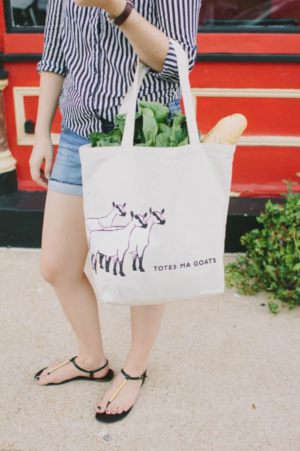 Totes Ma Goats West Elm Tote 2